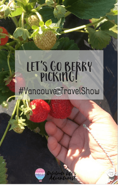 berry picking vancouver