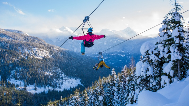 Ziplining (Mike Crane/Tourism Whistler) Insider's Guide to Whistler