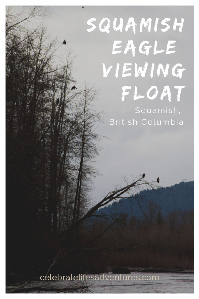 Squamish eagle viewing float