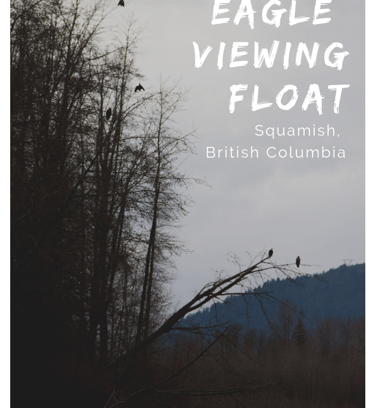 Bucket List Item: Squamish Eagle Viewing Float