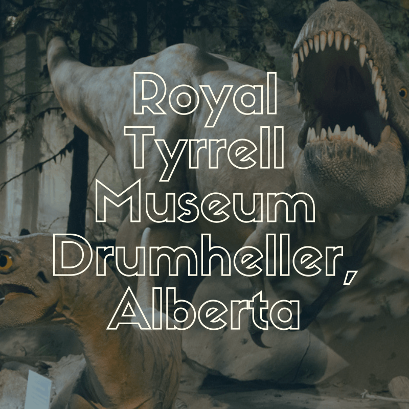 Get Excited – Go Back in Time at the Royal Tyrell Museum